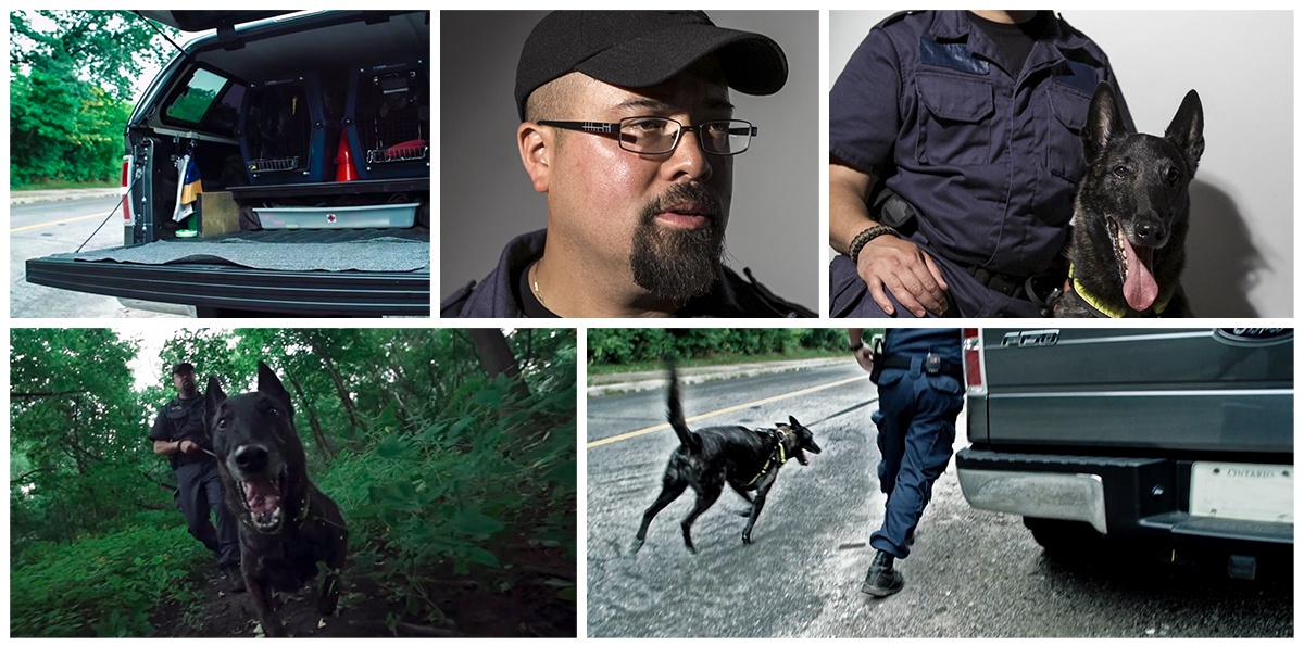 Search  Rescue dog Ace's bureau is a behind of an F-150